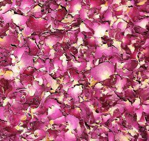 غنچه گل محمدی خشک