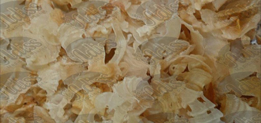 فروش کتیرا خرمنی