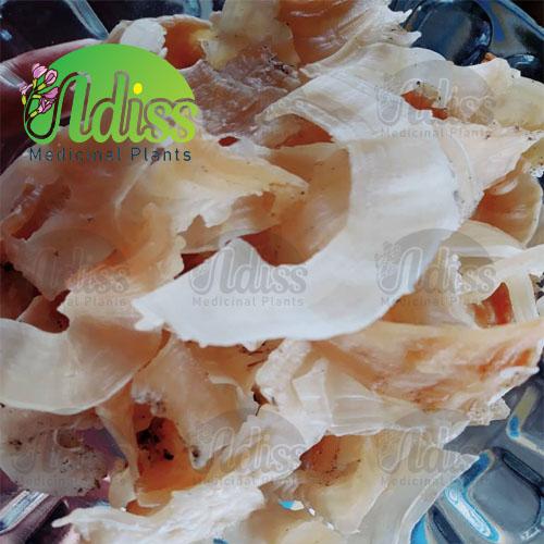 لیست قیمت کتیرا خرمنی در بازار
