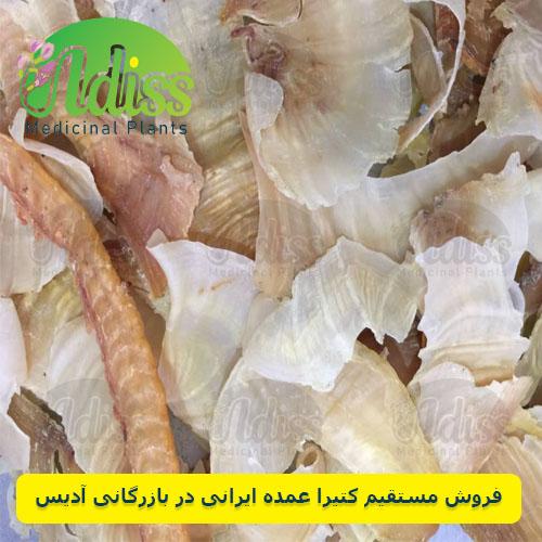 فروش مستقیم کتیرا در بازرگانی آدیس